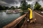 Dog And Man At Fishing