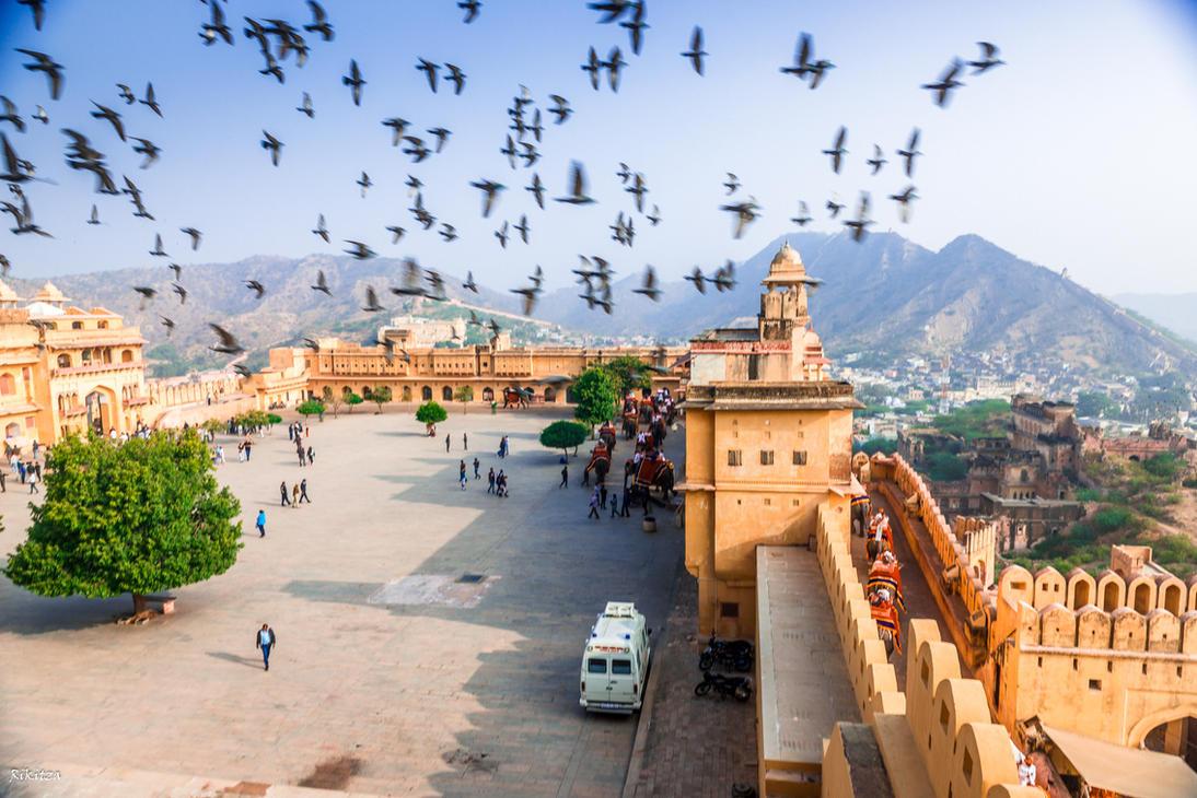 Incredible India - birds, elephants and people by Rikitza