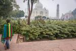 Incredible India - POV by Rikitza