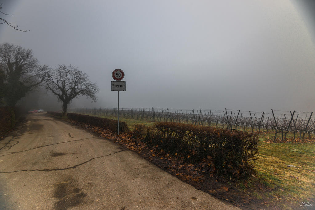 Geneva city - the way to Sierne by Rikitza