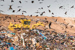our Israel - clean planet by Rikitza