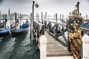 fascinating Venice - carnival 2019 - 12 by Rikitza