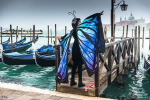 fascinating Venice - carnival 2019 - 11 by Rikitza