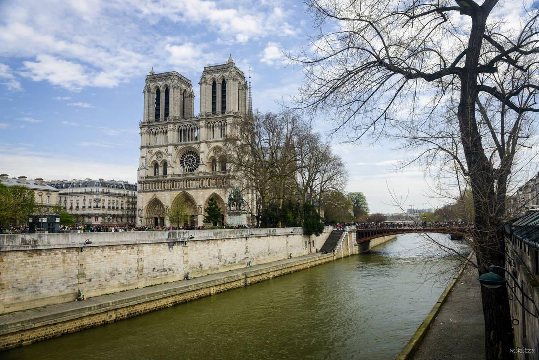 Paris city of lights - Notre Dame by Rikitza