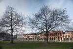 fascinating Venice - Padova city behind trees