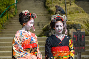a pair of maika in Kyoto