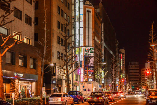 view in the Tokyo night