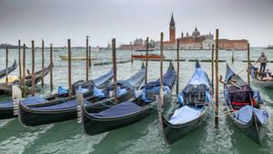 Venice heart