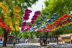 Surprising China - shadow in Beijing park by Rikitza