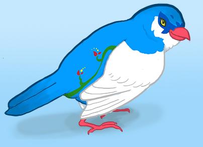 birdmir's Profile Picture