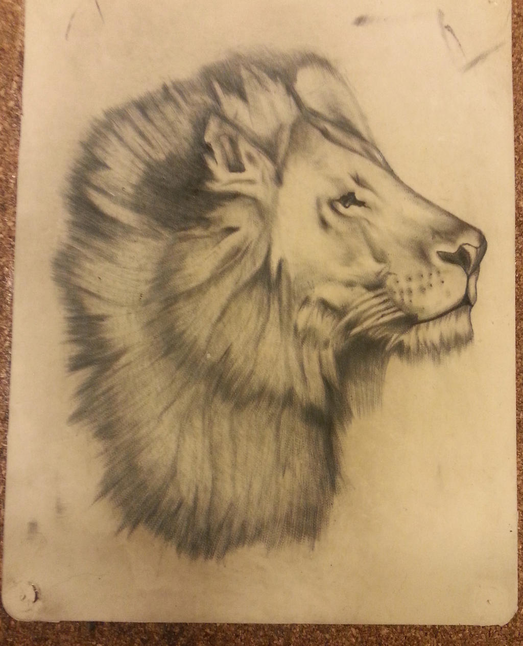 Lion tattoo on synthetic skin by sladatuey on deviantart for Artificial skin for tattooing