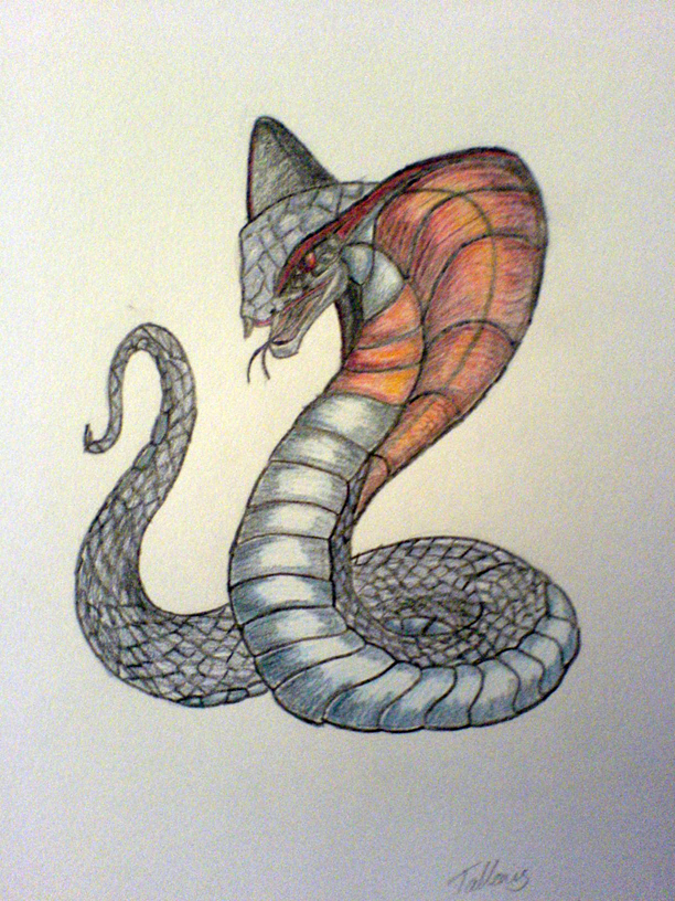 Red banded cobra by Tallonis