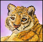 Tiger scribble by Tallonis