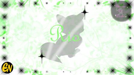 Princess of Desire Character: Rio by Princess-Of-Desire