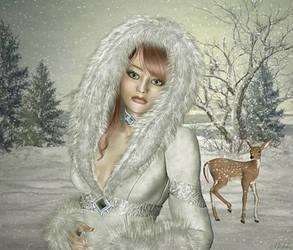 Winter Wonderland by Michka2