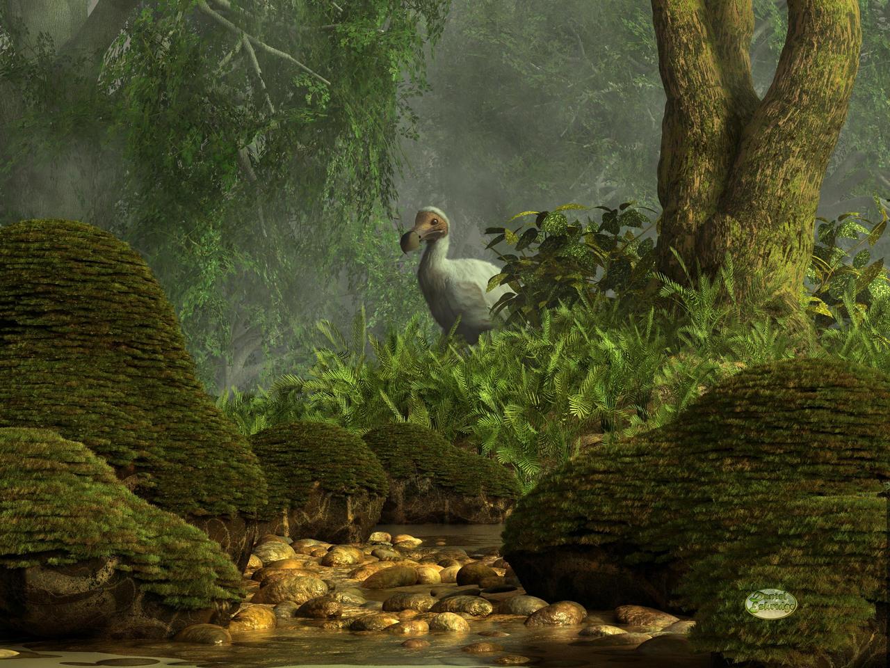 Dodo And The Dodo's - Sømand Af Verden