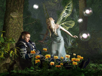 The Knight and The Faerie by deskridge