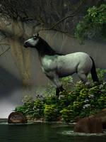 Wild Horse in the Forest by deskridge
