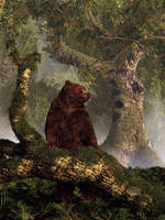 The Grizzly's Forest by deskridge