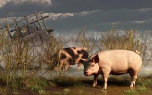 Pigs After A Storm by deskridge