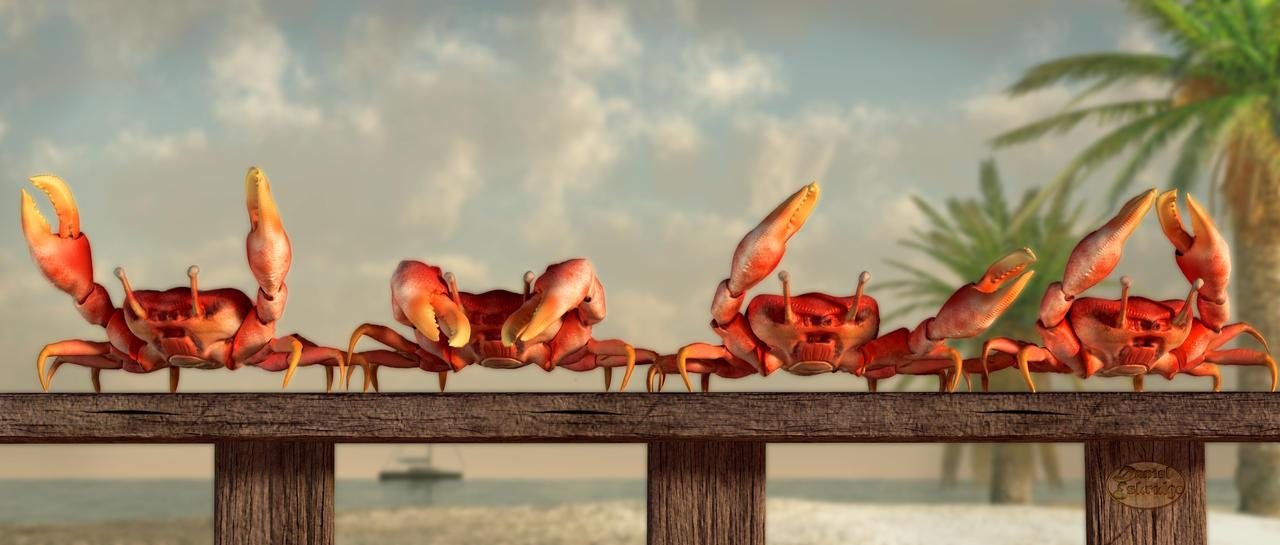 Crab Dance by deskridge