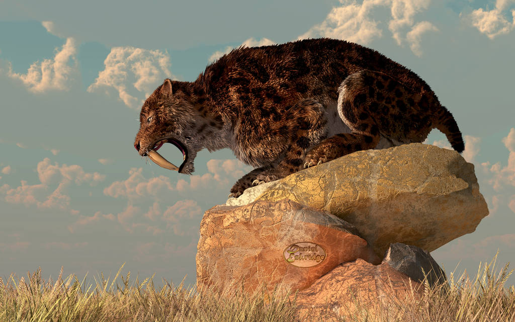 Saber-Tooth on a Rock by deskridge