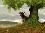 Hide and Goat Seek