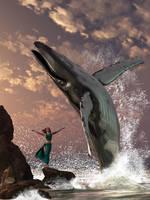 Whale Watcher Fantasy