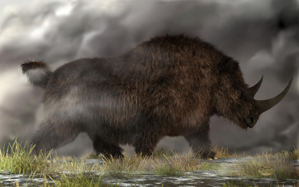 woolly_rhinoceros_by_deskridge-d65h0tg.j