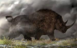 Woolly Rhinoceros by deskridge