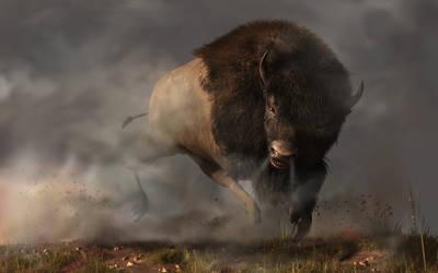 Charging Bison by deskridge
