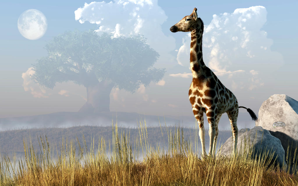 Giraffe and Giant Baobab by deskridge