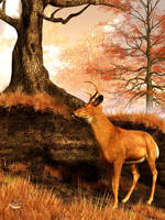 Autumn Hart by deskridge