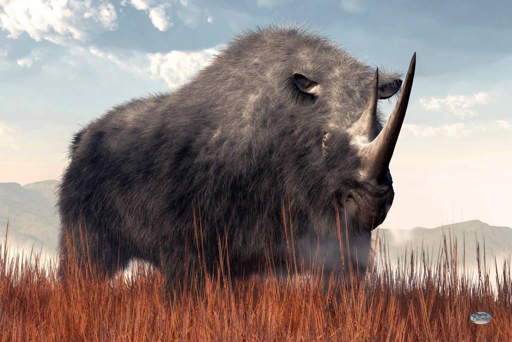 Ice Age Rhino by deskridge
