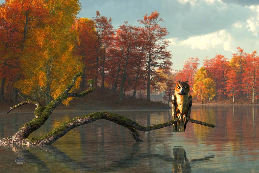 Owl on an Autumn Lake by deskridge