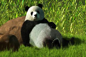 Reclining Panda by deskridge