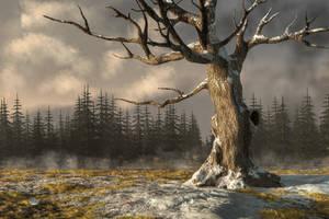 Winterscape by deskridge
