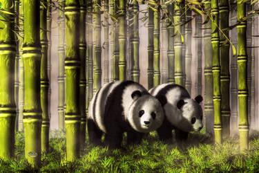 Pandas in a Bamboo Forest by deskridge