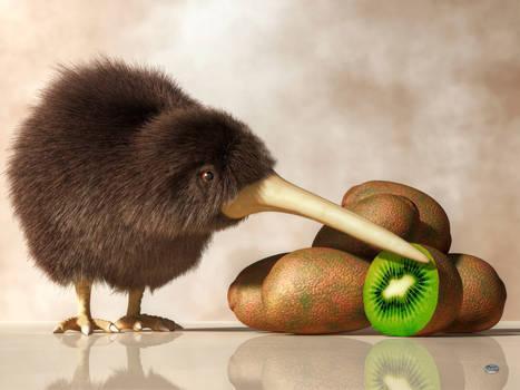 Kiwi Bird and Kiwifruit