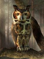 Great Horned Owl by deskridge
