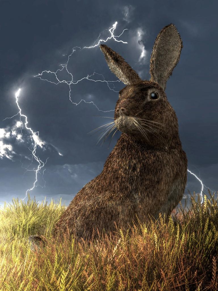 The Drama Bunny by deskridge