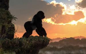 Gorilla Sunset by deskridge