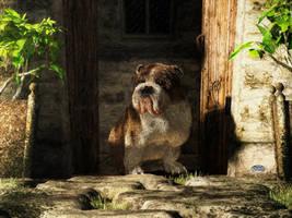 Bulldog in a Doorway by deskridge