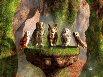 A Parliament of Owls by deskridge