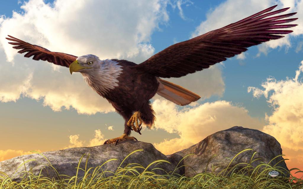Taking Flight by deskridge