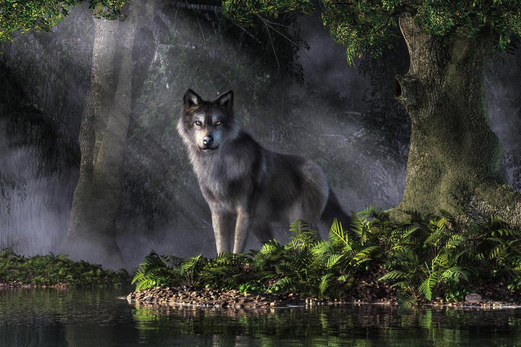 Spirit of the Forest by deskridge