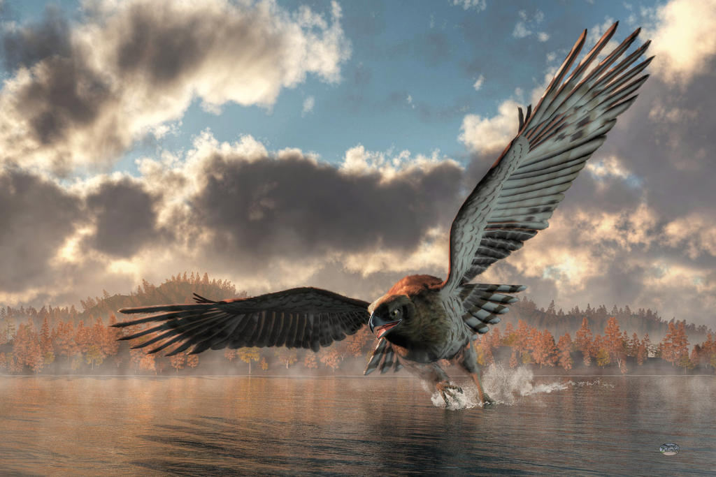 Morning Swim, Eagle Style by deskridge