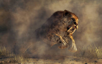 Sabre Tooth Pounce
