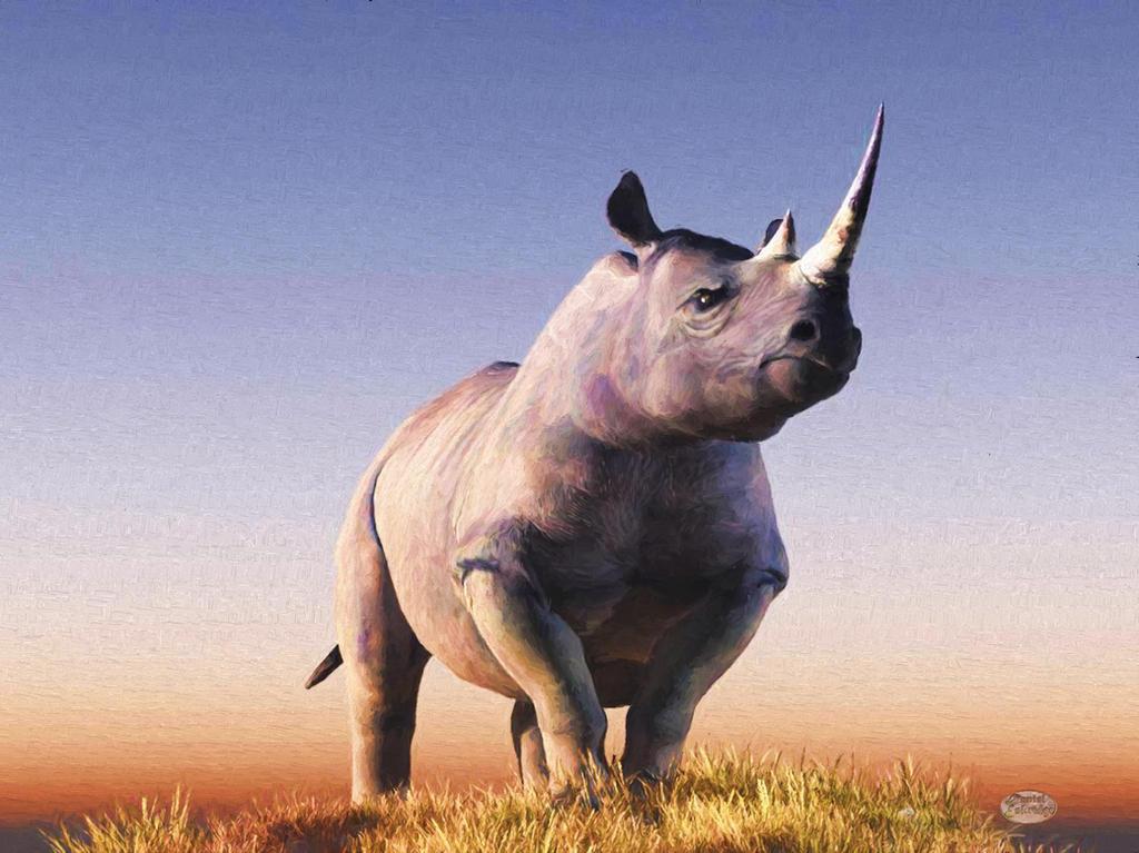 Rhino by deskridge