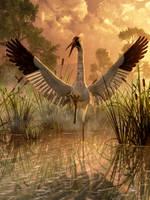 Fighting Crane by deskridge